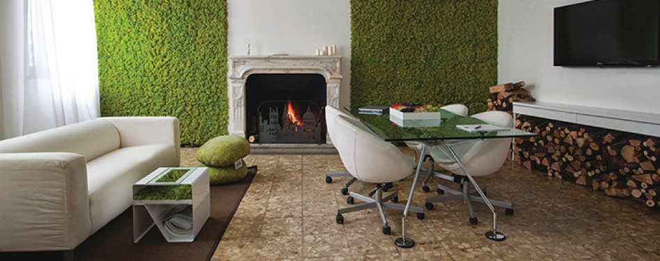 Building a living wall for your home green home guide for Green home guide